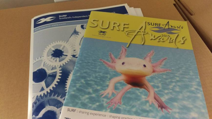Promotional materials from the SURF Awards 2015