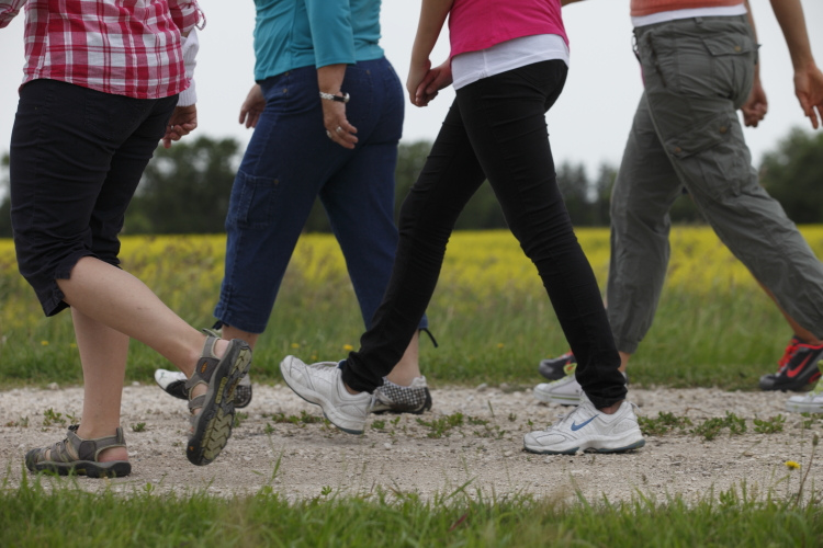 walking walk exercise health benefits active during together ways cities way field canolaeatwell while physical increase workday stay tips take